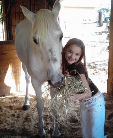 *beginner/childsafe/lesson horse*