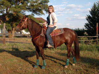 Talented filly for reining, trail, or cow work