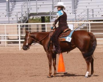 2004 sorrel AQHA mare: sweet, willing, and smart!