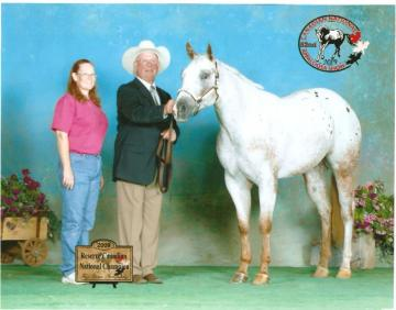 2009 Canadian Reserve Champion  2 Yr Old Mare