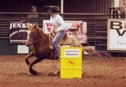 Barrel Horse - CAN FLY!